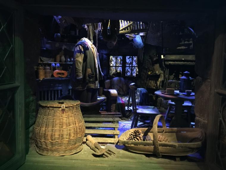 Inside Hagrid's Hut