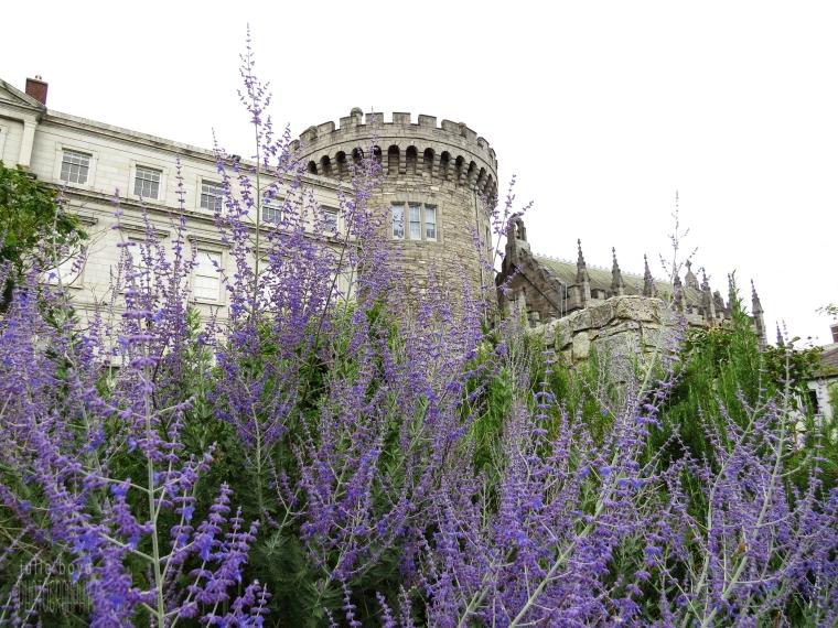 Dublin-Castle-Lavender.jpg