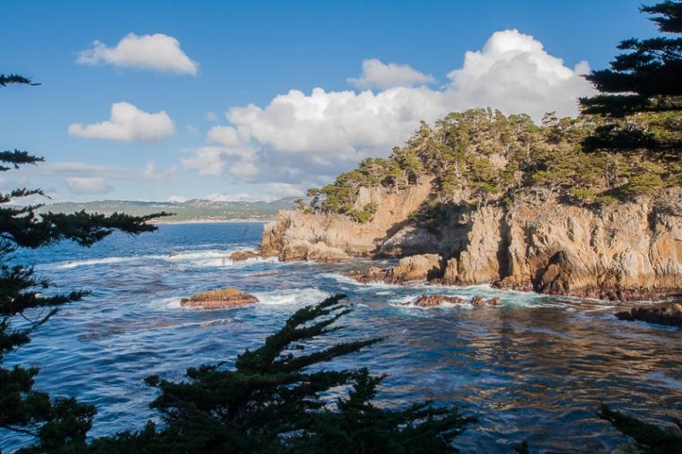 point-lobos-natural-reserve-julie-boyd-photo