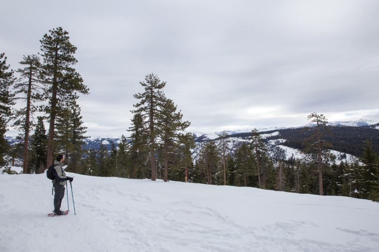 yosemite-dewey-point-snowshoe-brian-vista