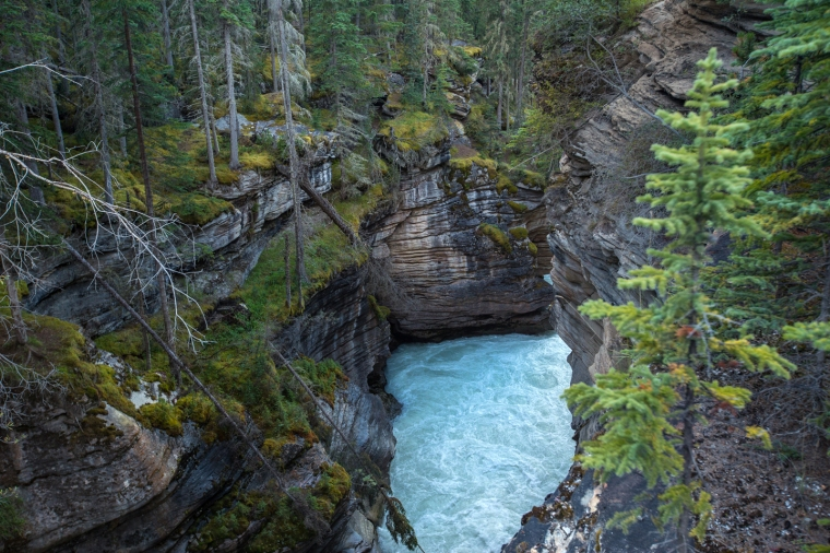 athabasca-falls-river