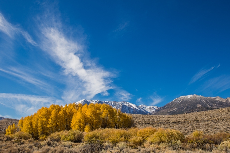 eastern-sierras-fall-colors-mountains