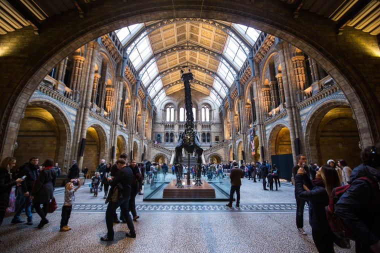 London-Natural-History-Museum-Interior-1