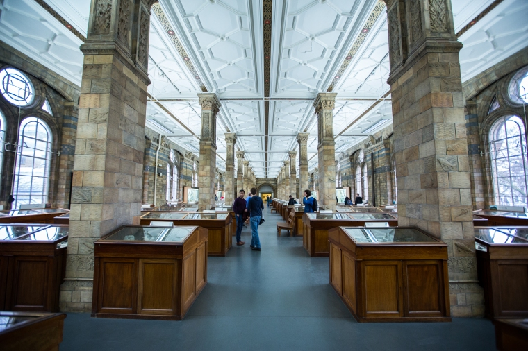 London-Natural-History-Museum-Interior-5